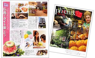 中国新聞 phoenix